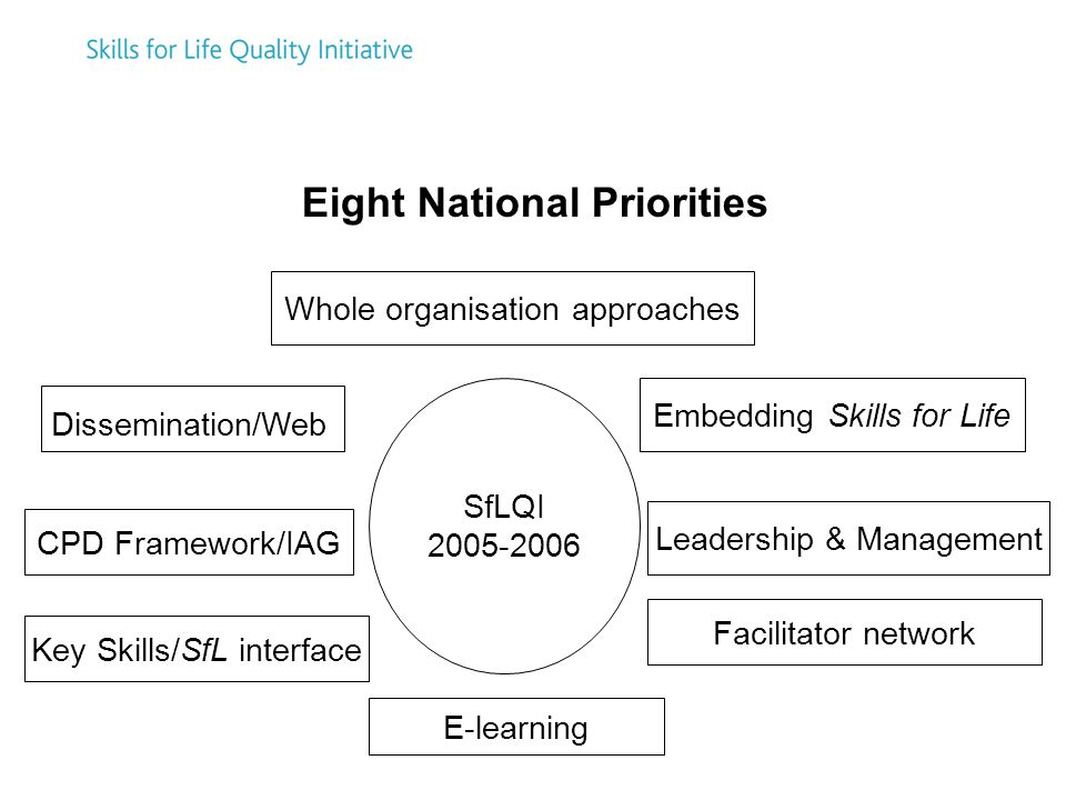 Eight National Priorities SfLQI Whole organisation approaches Embedding Skills for Life Leadership & Management Facilitator network E-learning Key Skills/SfL interface CPD Framework/IAG Dissemination/Web