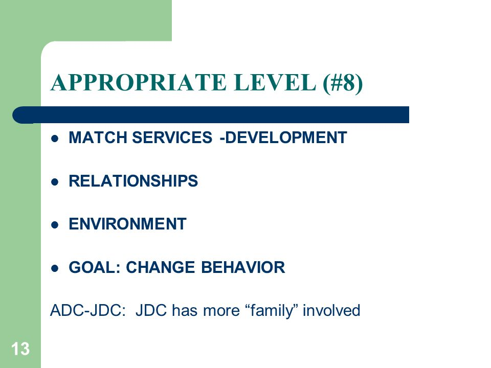 13 APPROPRIATE LEVEL (#8) MATCH SERVICES -DEVELOPMENT RELATIONSHIPS ENVIRONMENT GOAL: CHANGE BEHAVIOR ADC-JDC: JDC has more family involved