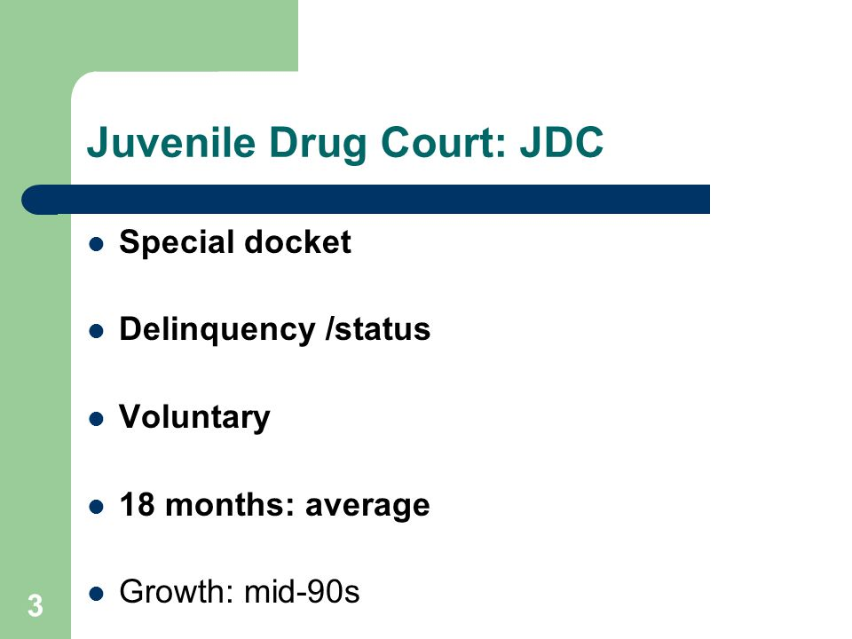 3 Juvenile Drug Court: JDC Special docket Delinquency /status Voluntary 18 months: average Growth: mid-90s