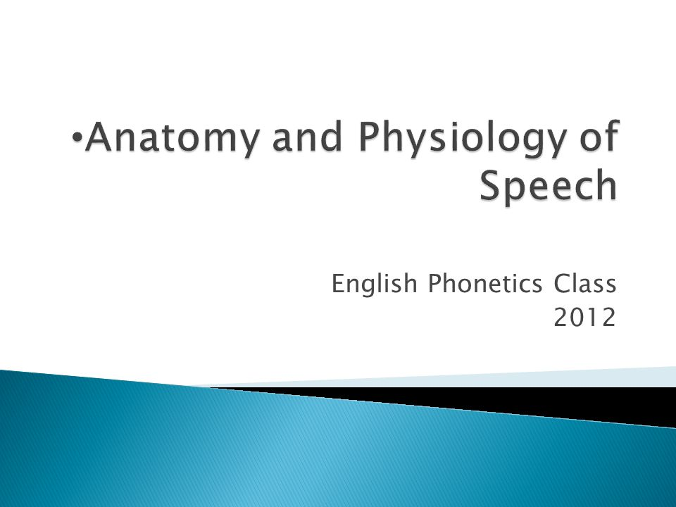 English Phonetics Class 2012