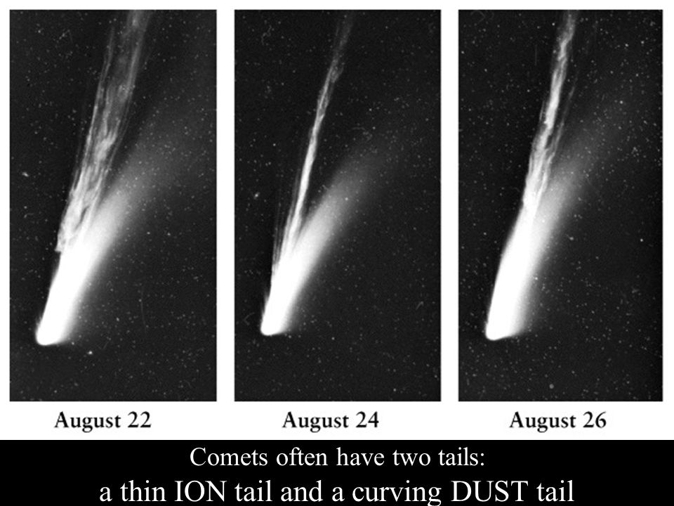 Comets often have two tails: a thin ION tail and a curving DUST tail