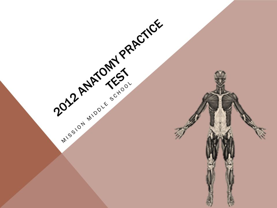 2012 Anatomy Practice Test Mission Middle School Ppt Download