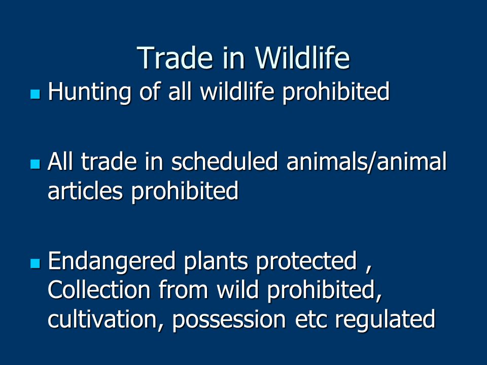 Trade in Wildlife Hunting of all wildlife prohibited Hunting of all wildlife prohibited All trade in scheduled animals/animal articles prohibited All trade in scheduled animals/animal articles prohibited Endangered plants protected, Collection from wild prohibited, cultivation, possession etc regulated Endangered plants protected, Collection from wild prohibited, cultivation, possession etc regulated