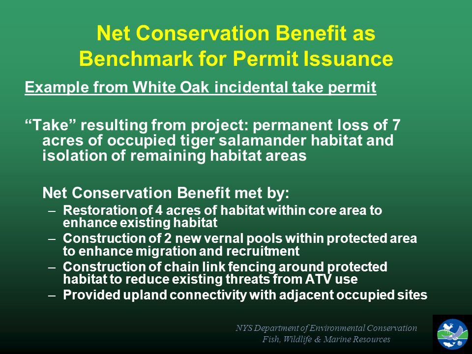 NYS Department of Environmental Conservation Fish, Wildlife & Marine Resources Net Conservation Benefit as Benchmark for Permit Issuance Example from White Oak incidental take permit Take resulting from project: permanent loss of 7 acres of occupied tiger salamander habitat and isolation of remaining habitat areas Net Conservation Benefit met by: –Restoration of 4 acres of habitat within core area to enhance existing habitat –Construction of 2 new vernal pools within protected area to enhance migration and recruitment –Construction of chain link fencing around protected habitat to reduce existing threats from ATV use –Provided upland connectivity with adjacent occupied sites