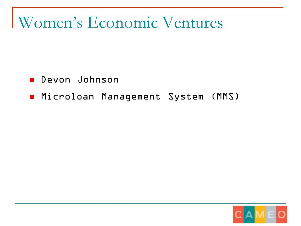 Women's Economic Ventures Devon Johnson Microloan Management System (MMS)