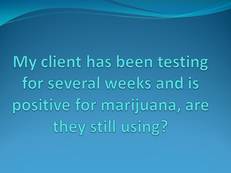 Drug Testing: Answers to Frequently Asked Questions and New