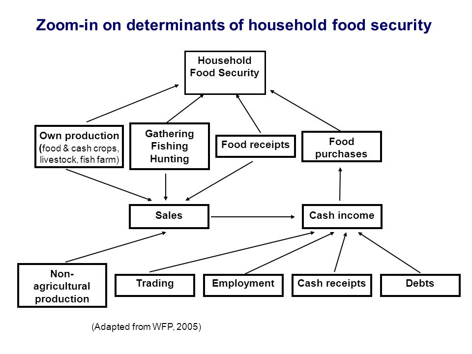 (Adapted from WFP, 2005) Food purchases Food receipts Gathering Fishing Hunting Cash income Own production ( food & cash crops, livestock, fish farm) Sales Employment Non- agricultural production Cash receiptsTradingDebts Zoom-in on determinants of household food security Household Food Security