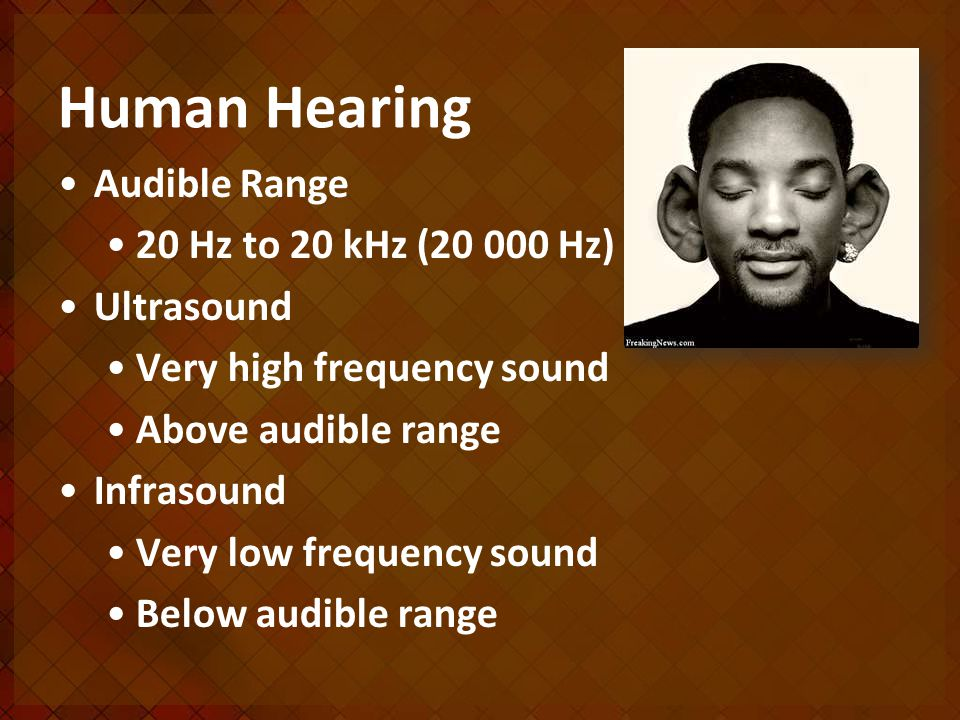 Human Hearing Audible Range 20 Hz to 20 kHz ( Hz) Ultrasound Very high frequency sound Above audible range Infrasound Very low frequency sound Below audible range
