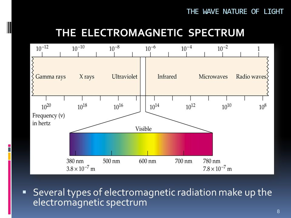  Several types of electromagnetic radiation make up the electromagnetic spectrum 8 THE WAVE NATURE OF LIGHT THE ELECTROMAGNETIC SPECTRUM