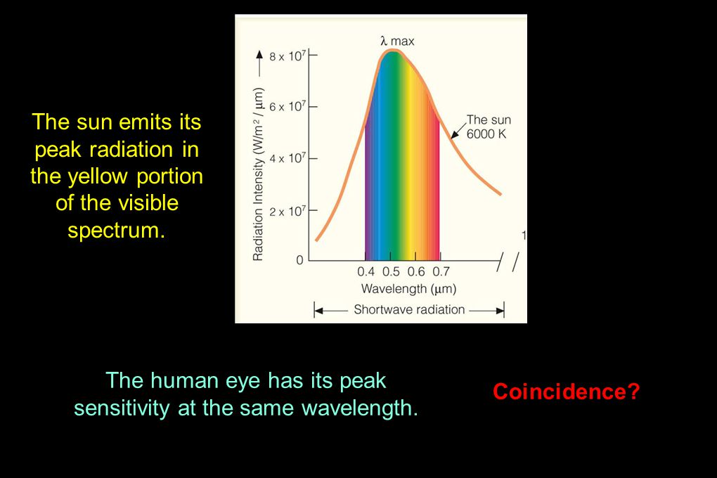 The sun emits its peak radiation in the yellow portion of the visible spectrum.
