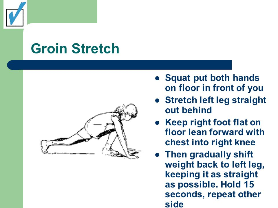 Groin Stretch Squat put both hands on floor in front of you Stretch left leg straight out behind Keep right foot flat on floor lean forward with chest into right knee Then gradually shift weight back to left leg, keeping it as straight as possible.