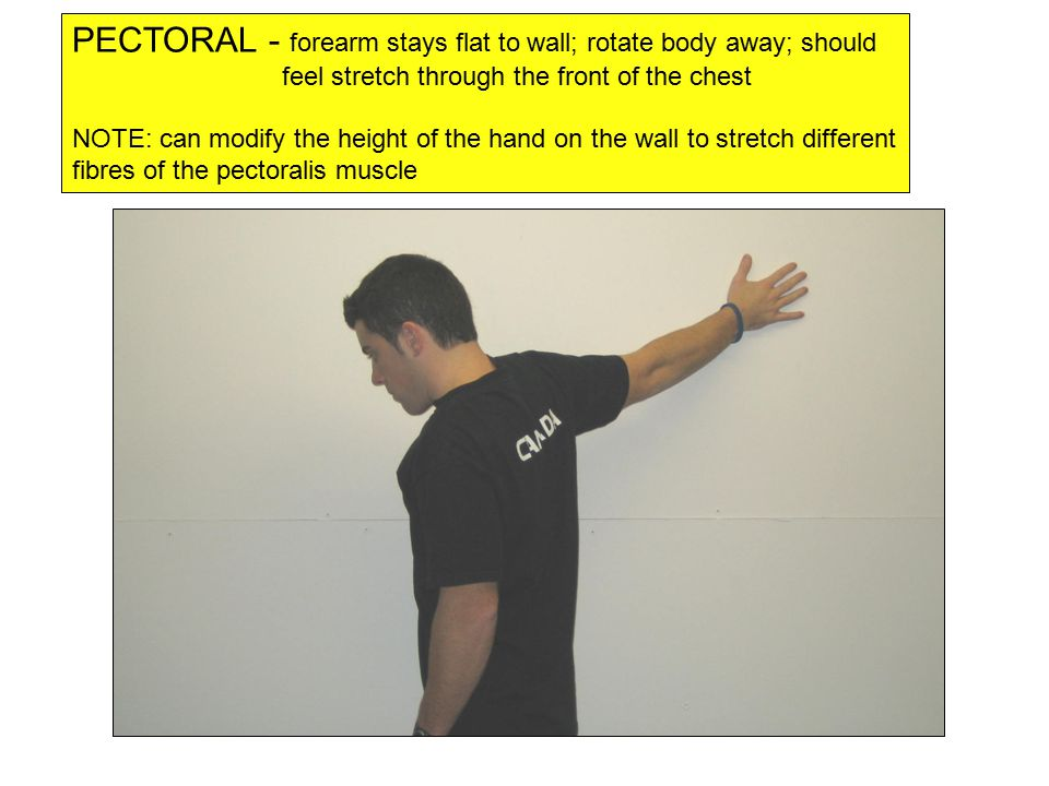 PECTORAL - forearm stays flat to wall; rotate body away; should feel stretch through the front of the chest NOTE: can modify the height of the hand on the wall to stretch different fibres of the pectoralis muscle