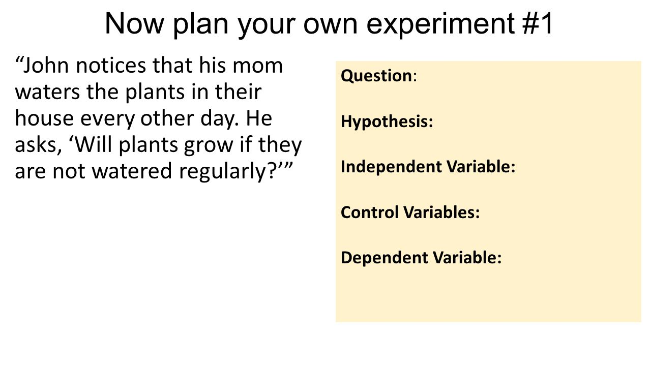 Planning Your Own Experiment  Let's Review  What are the
