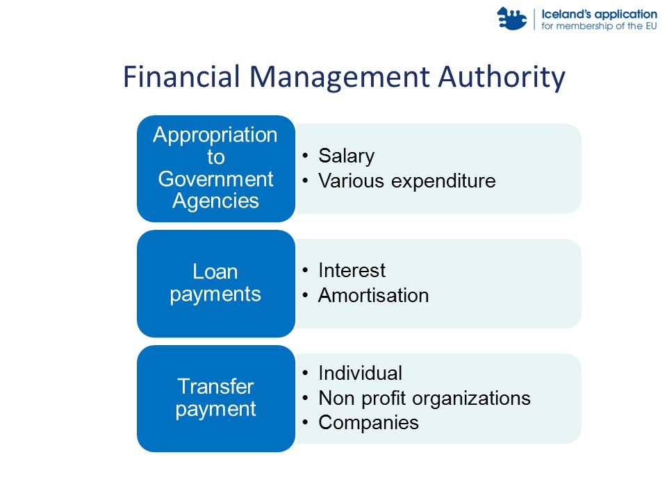 Salary Various expenditure Appropriation to Government Agencies Interest Amortisation Loan payments Individual Non profit organizations Companies Transfer payment