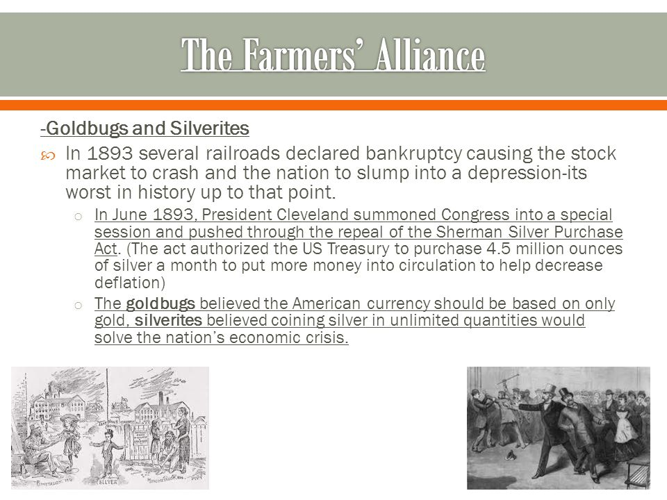 -Goldbugs and Silverites  In 1893 several railroads declared bankruptcy causing the stock market to crash and the nation to slump into a depression-its worst in history up to that point.
