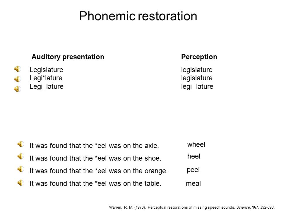Phonemic restoration Auditory presentation Perception Legislature legislature Legi*lature legislature Legi_laturelegi lature It was found that the *eel was on the axle.