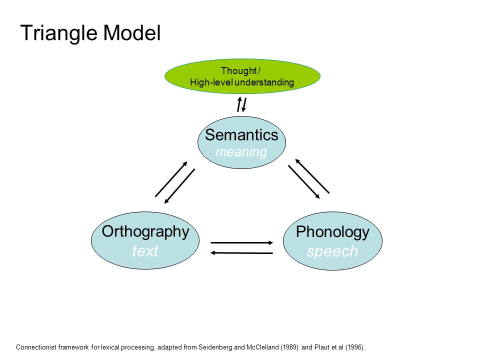 Thought / High-level understanding Semantics meaning Orthography text Phonology speech Connectionist framework for lexical processing, adapted from Seidenberg and McClelland (1989) and Plaut et al (1996).