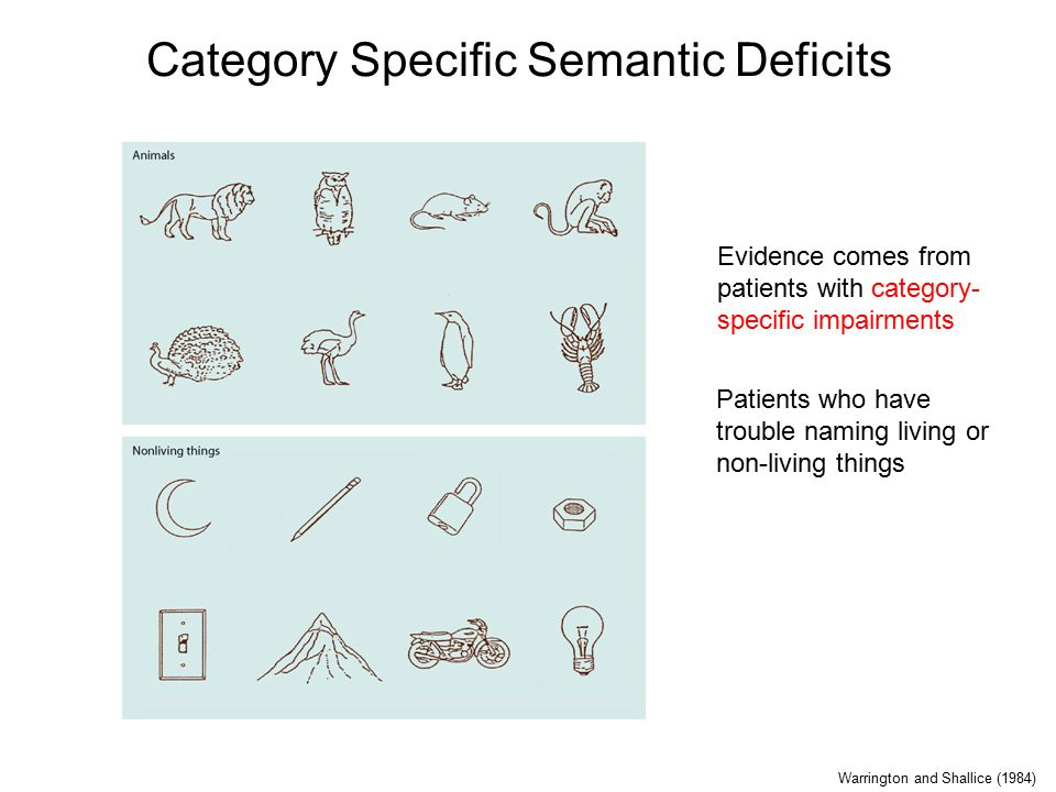 Category Specific Semantic Deficits Patients who have trouble naming living or non-living things Evidence comes from patients with category- specific impairments Warrington and Shallice (1984)