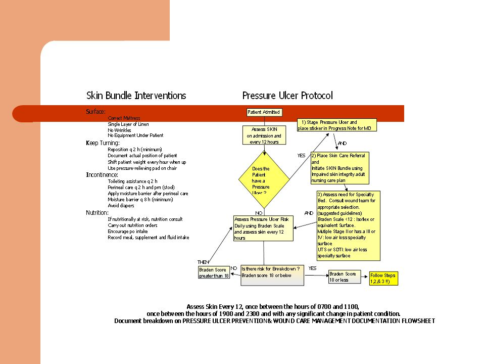 Document Skin Assessment Diagram Web About Wiring Diagram