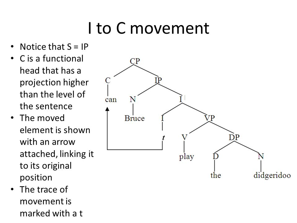 I to C movement Notice that S = IP C is a functional head that has a projection higher than the level of the sentence The moved element is shown with an arrow attached, linking it to its original position The trace of movement is marked with a t