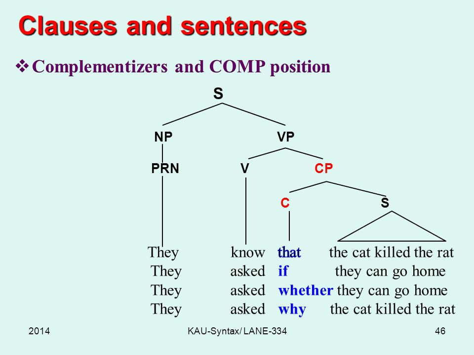Clauses and sentences 2014KAU-Syntax/ LANE-33446