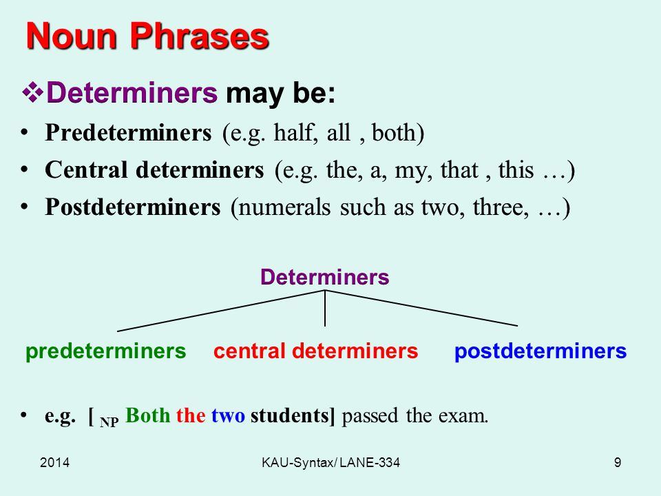 Noun Phrases 2014KAU-Syntax/ LANE-3349