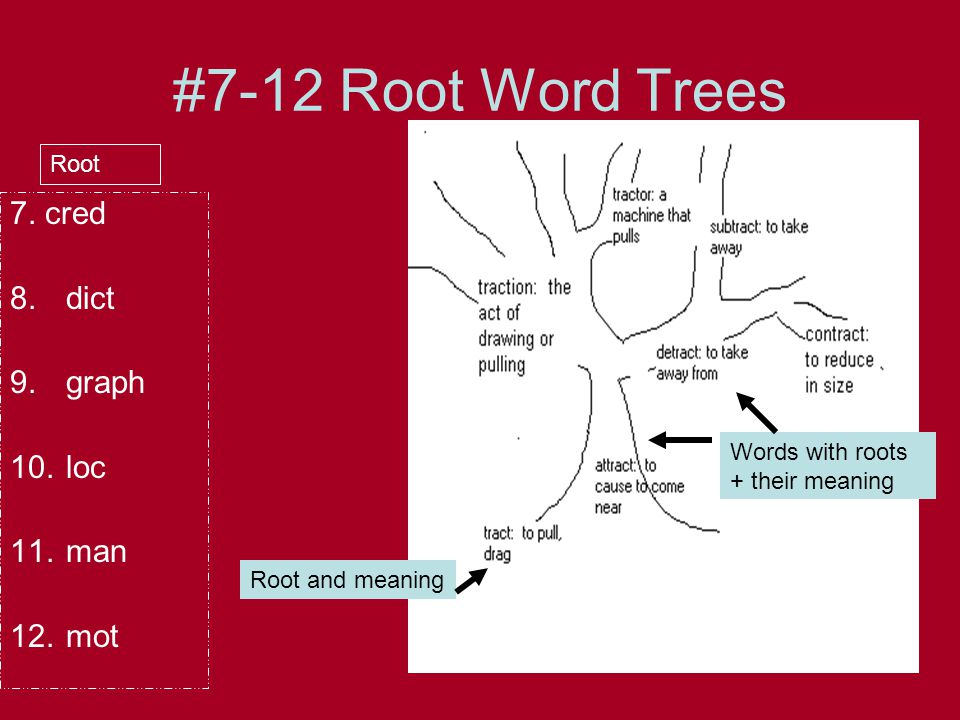 Root Word Chart Cred 8 Dict 9 Graph 7 Believe 8 Speak 9 Write Root Meaning 7 Credit Discredit Credulous 8 Dictation Predict Contradict Ppt Download