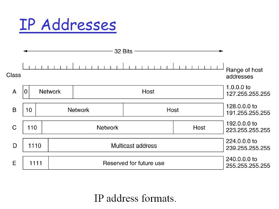 Network Layer4-2 IP Addresses