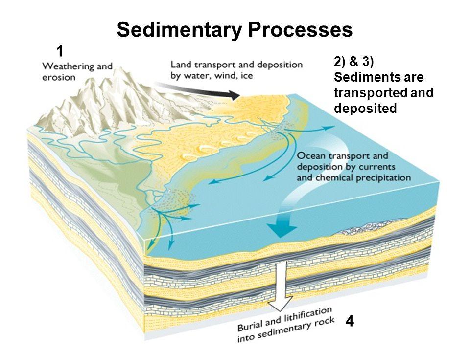 ผลการค้นหารูปภาพสำหรับ sedimentary process