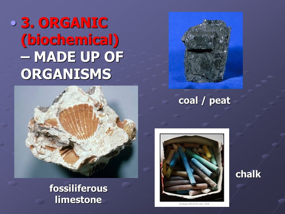 3. ORGANIC (biochemical) – MADE UP OF ORGANISMS3.
