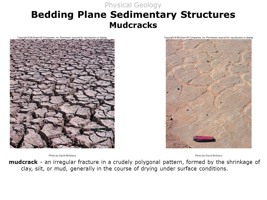 Bedding Plane Sedimentary Structures Mudcracks mudcrack - an irregular fracture in a crudely polygonal pattern, formed by the shrinkage of clay, silt, or mud, generally in the course of drying under surface conditions.