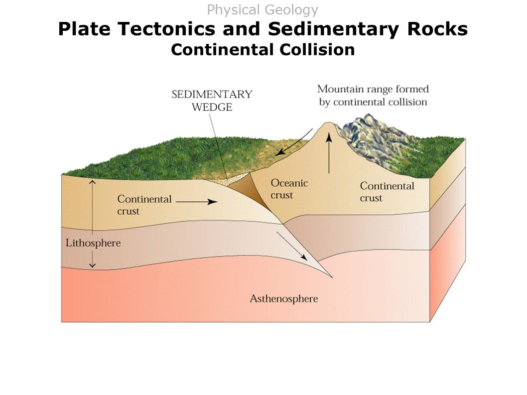 Plate Tectonics and Sedimentary Rocks Continental Collision Physical Geology