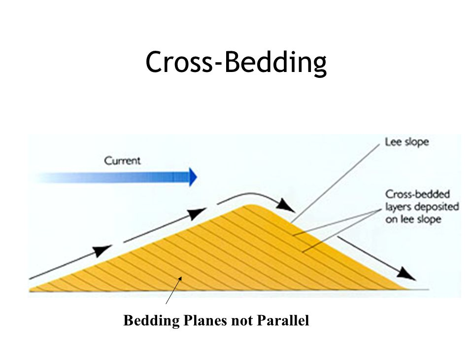 Cross-Bedding Bedding Planes not Parallel