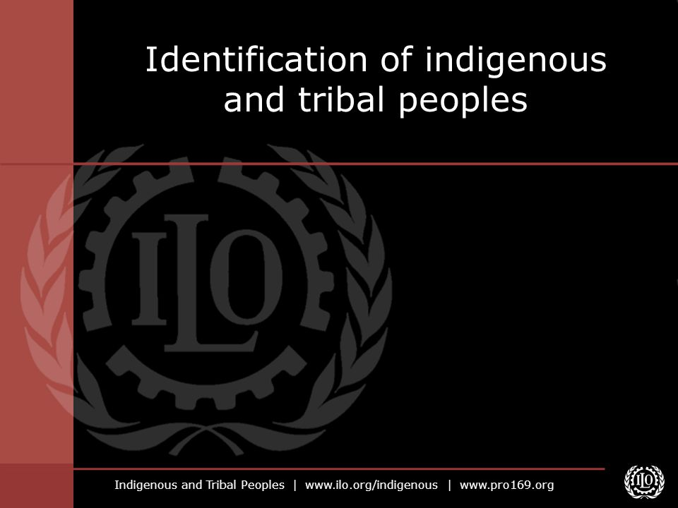 Indigenous and Tribal Peoples |   |   Identification of indigenous and tribal peoples