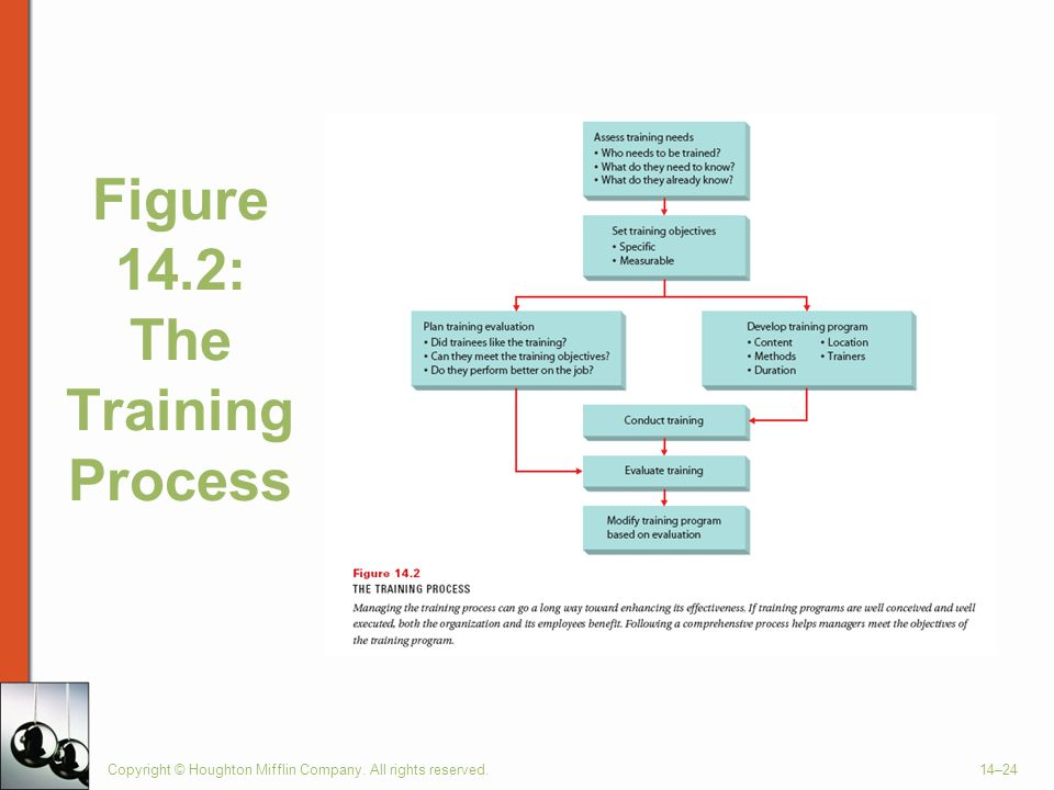 Copyright © Houghton Mifflin Company. All rights reserved.14–24 Figure 14.2: The Training Process
