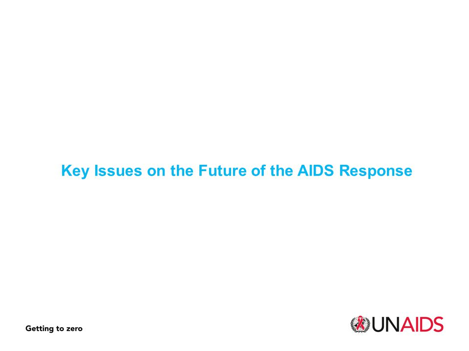 Key Issues on the Future of the AIDS Response