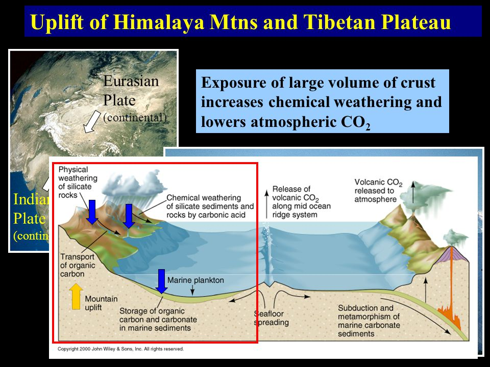 Uplift of Himalaya Mtns and Tibetan Plateau Indian Plate (continental) Eurasian Plate (continental) Exposure of large volume of crust increases chemical weathering and lowers atmospheric CO 2