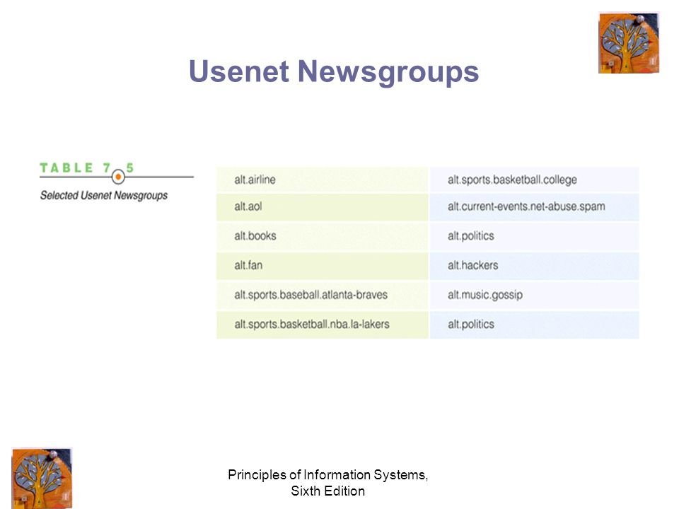 Principles of Information Systems, Sixth Edition Usenet Newsgroups