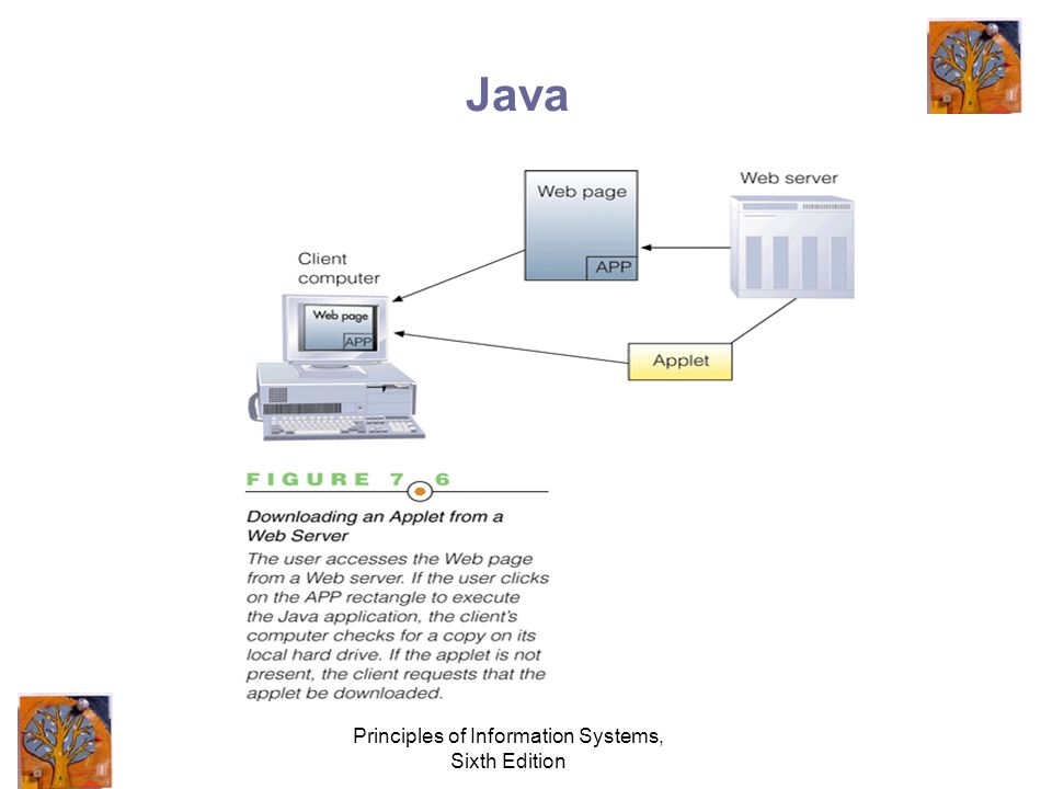 Principles of Information Systems, Sixth Edition Java