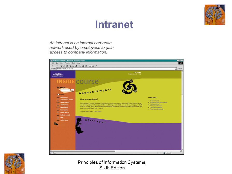 Principles of Information Systems, Sixth Edition Intranet