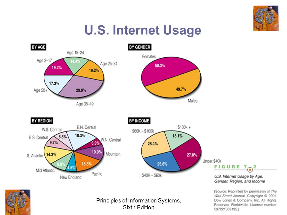 Principles of Information Systems, Sixth Edition U.S. Internet Usage