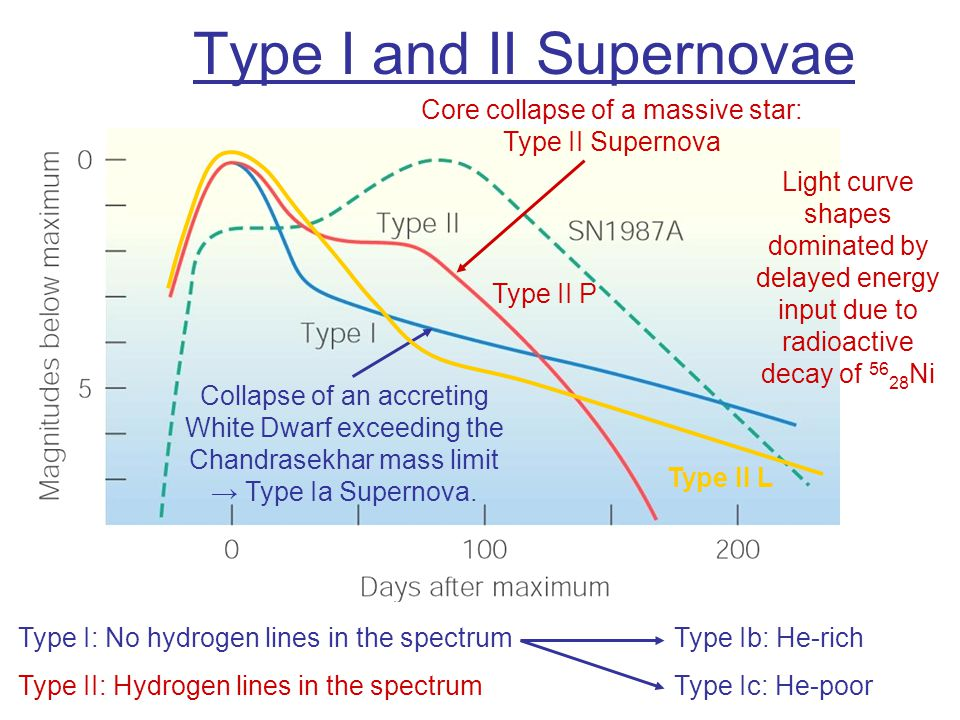 Type I and II Supernovae Core collapse of a massive star: Type II Supernova Collapse of an accreting White Dwarf exceeding the Chandrasekhar mass limit → Type Ia Supernova.