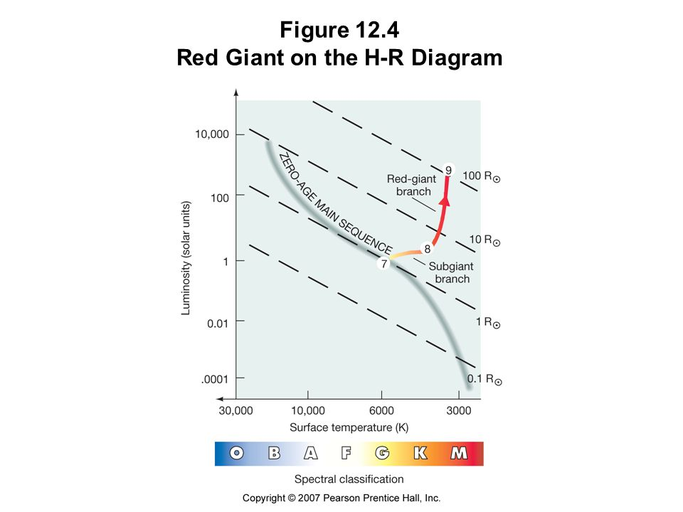 Figure 12.4 Red Giant on the H-R Diagram