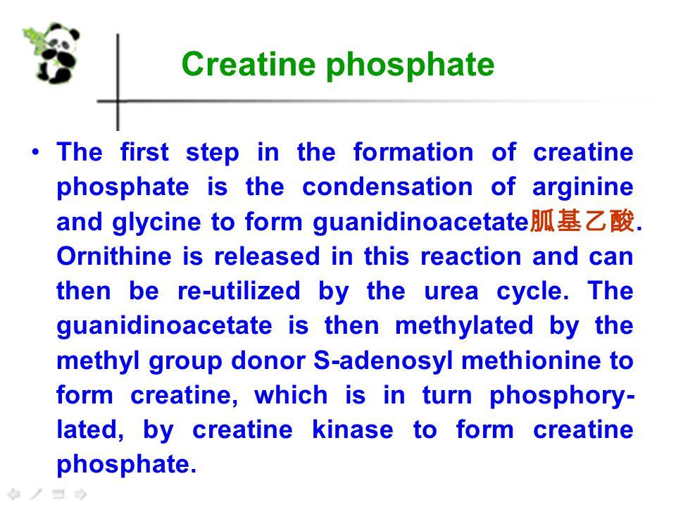 M1  Nitrogen Fixation and Assimilation M2  Amino acid