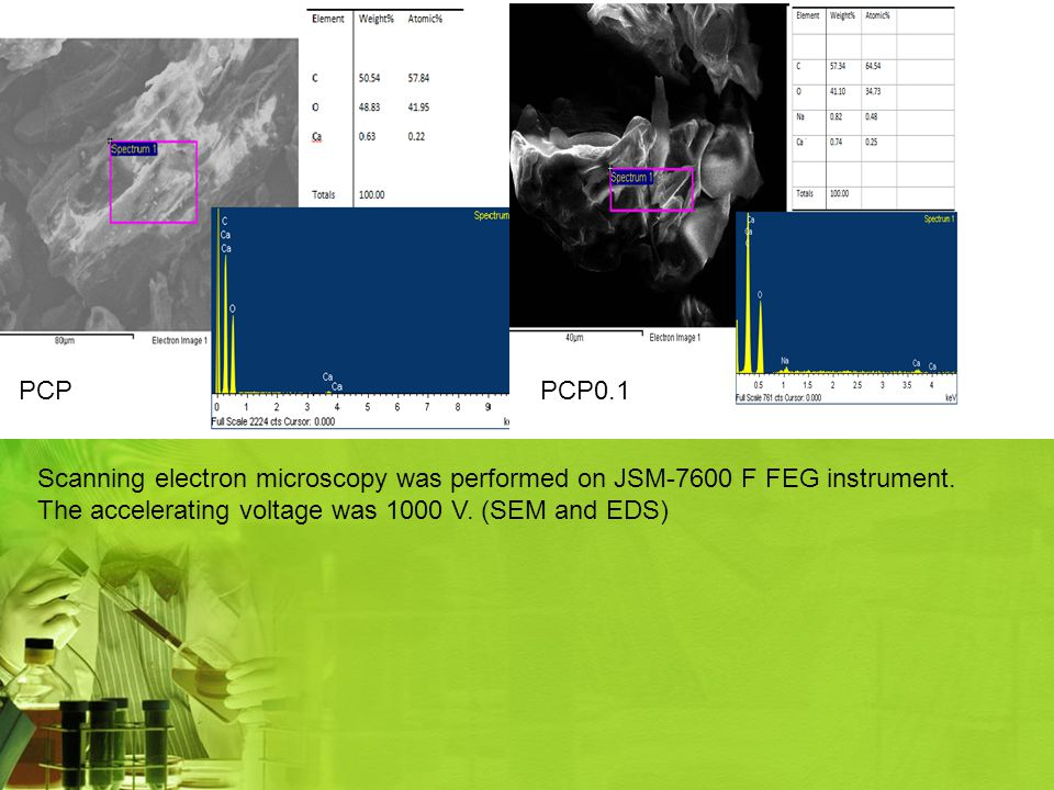 PCP PCP0.1 Scanning electron microscopy was performed on JSM-7600 F FEG instrument.