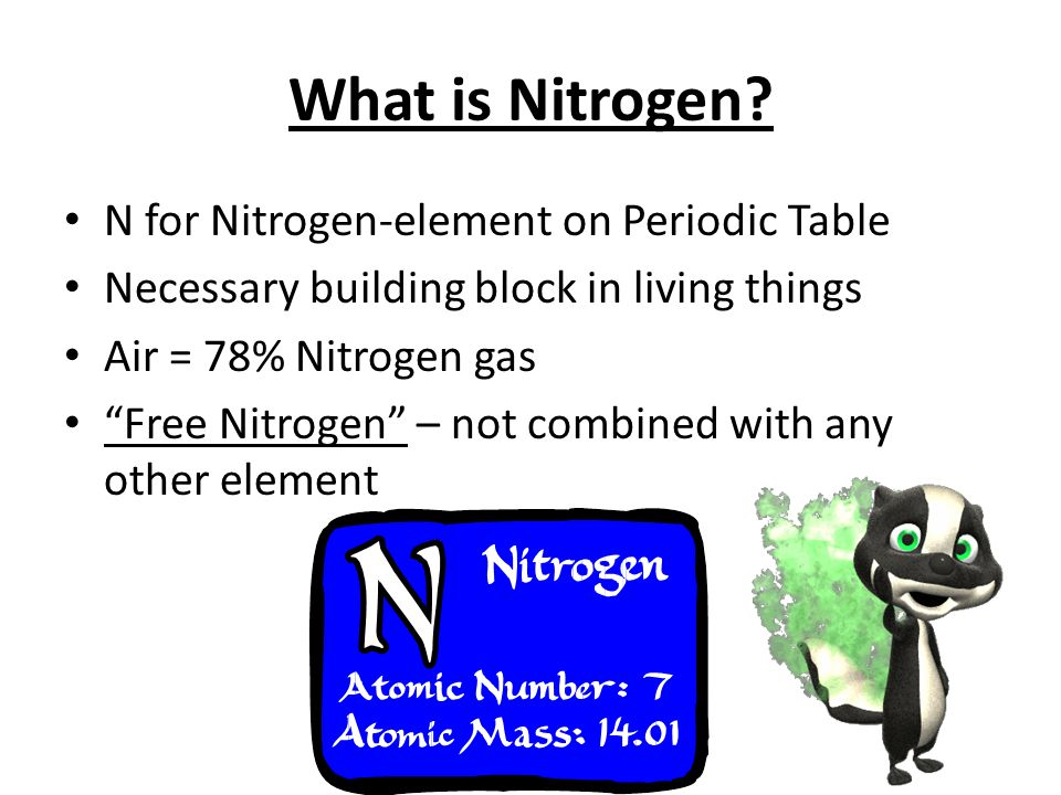 What Is Nitrogen N For Nitrogen Element On Periodic Table Necessary