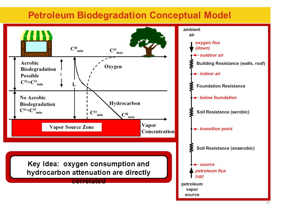 10 Petroleum Biodegradation Conceptual Model Key Idea: oxygen consumption and hydrocarbon attenuation are directly correlated