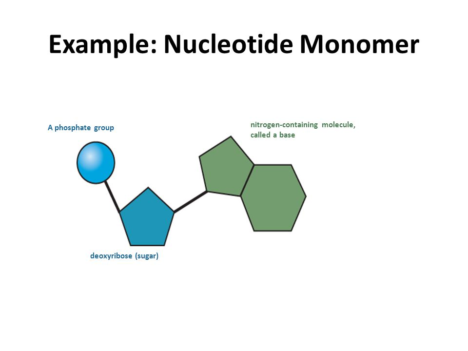 Example of nucleotide evolution on the ancestral recombination.