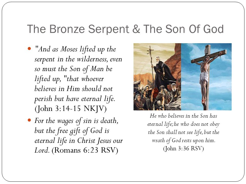 The Bronze Serpent & The Son Of God And as Moses lifted up the serpent in the wilderness, even so must the Son of Man be lifted up, that whoever believes in Him should not perish but have eternal life.
