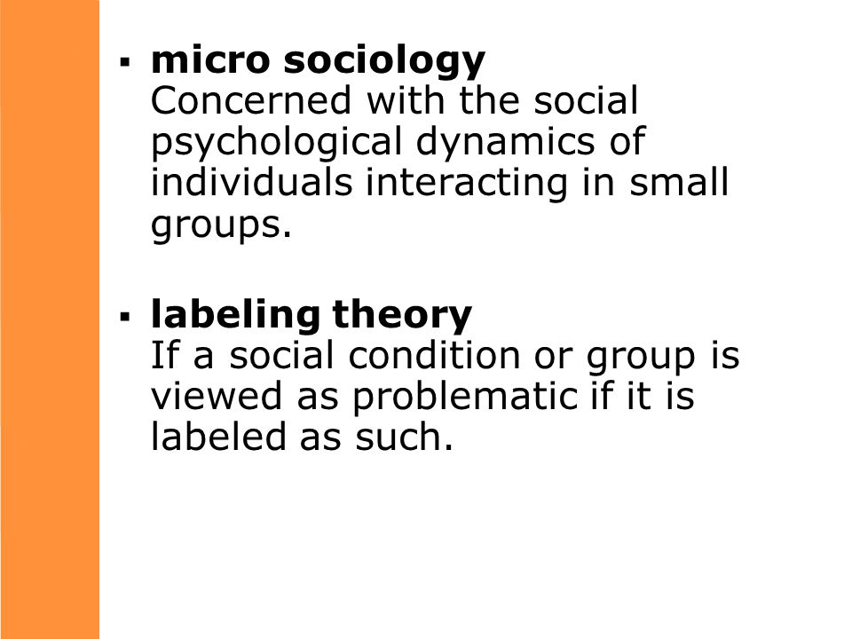  micro sociology Concerned with the social psychological dynamics of individuals interacting in small groups.